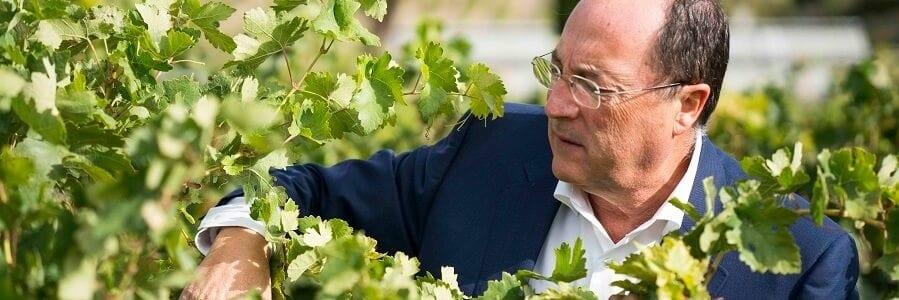Carlos Moro en el viñedo de Bodega Cyan