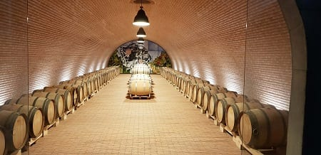 Sala de barricas de la bodega Valdemonjas en Ribera del Duero