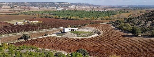 panorámica de la bodega Valdemonjas con el viñedo y el campo en su entorno