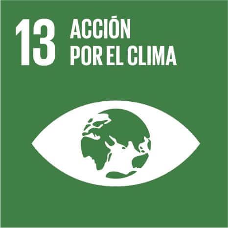 ODS 13, accion por el clima