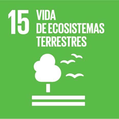 ODS 15, vida de ecosistemas terrestres