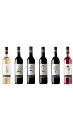 Pack-vinos