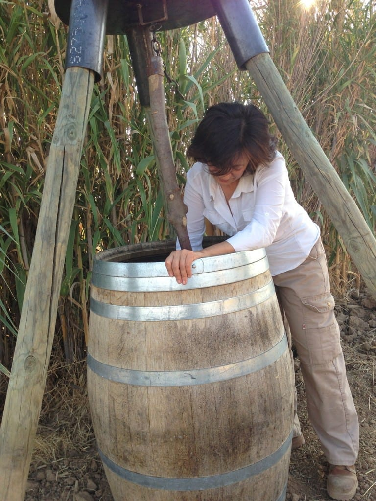 Carmen López de Uva de Vida dinamizando un preparado  biodinámico.