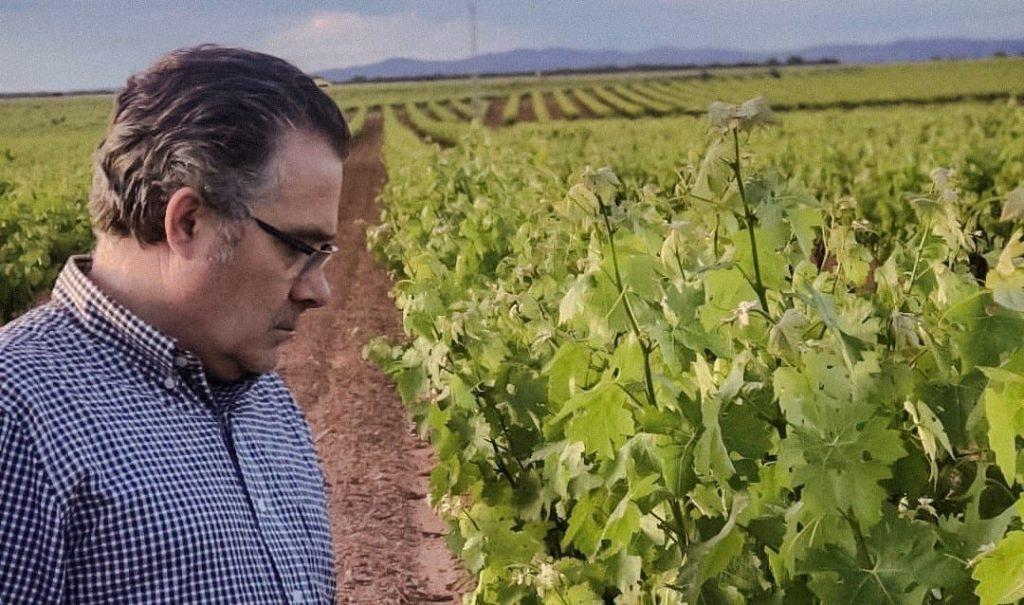Juan Miguel Tolosa en su viñedo
