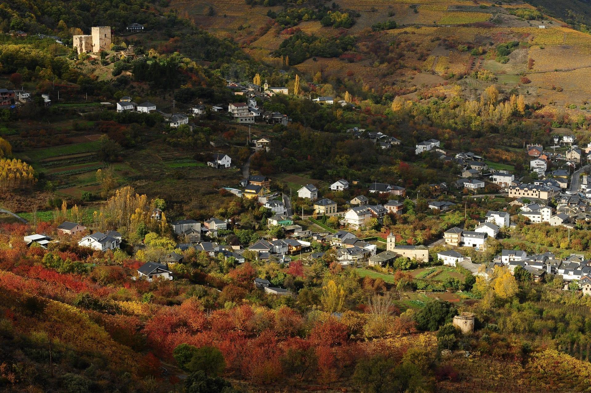 paisaje-viticola-bierzo