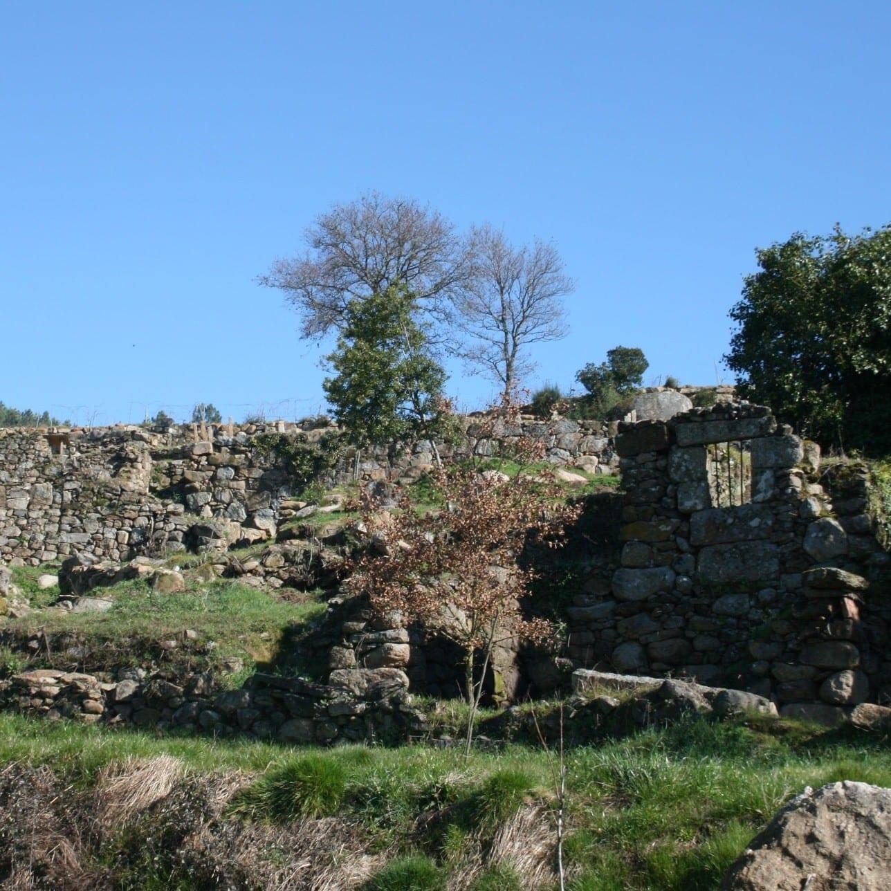 ruinas-ribeiro