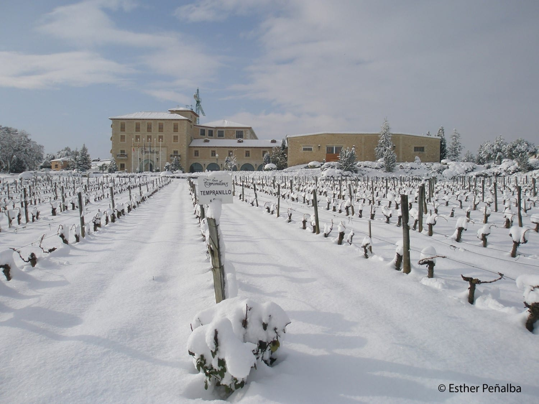 torremilanos-invierno