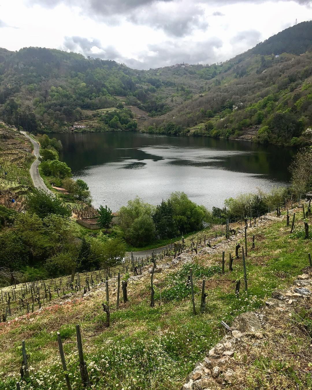 viticultura-heroica